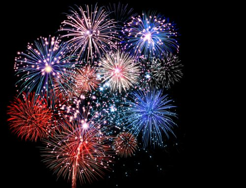Fireworks Fear: 5 Ways to Help Your Petrified Pet During Fireworks Celebrations